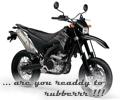 YAMAHA WR 250 X